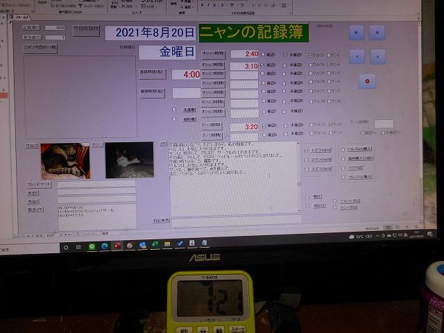 DSCN6582.jpg